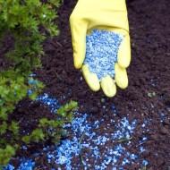 Увеличение доступности соединений фосфора в земле